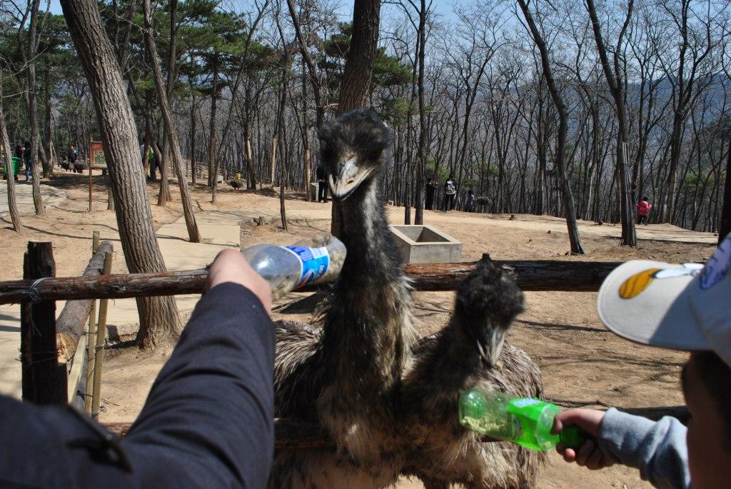 风行户外 济南野生动物园 摄影