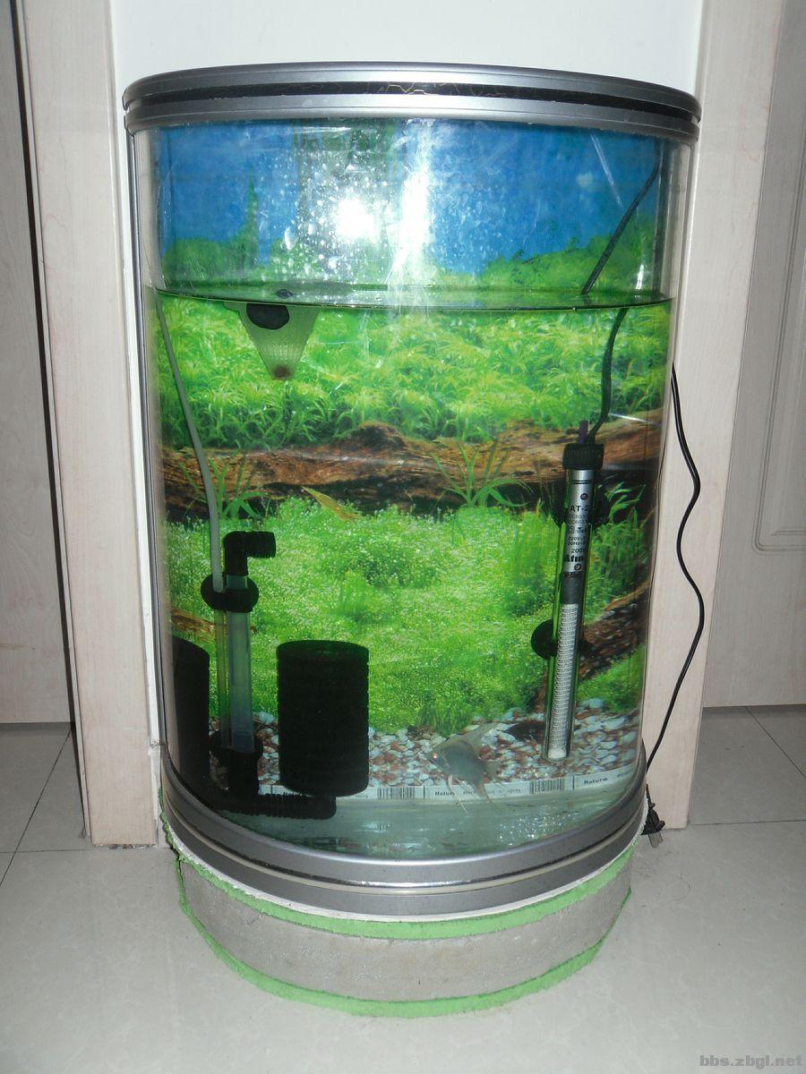 半圆形精品鱼缸