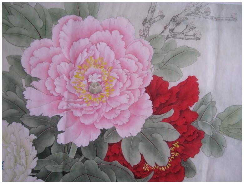 临摹李老师的牡丹 - 【工笔画交流】 - 【中国工笔画