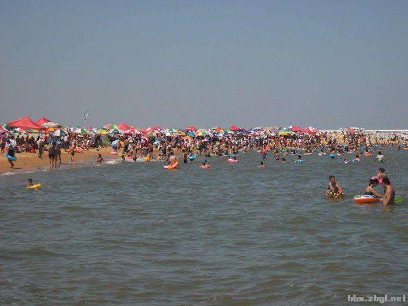 8月19日(周一)自驾去潍坊央子镇海水浴场,已经回来,多图,qq群