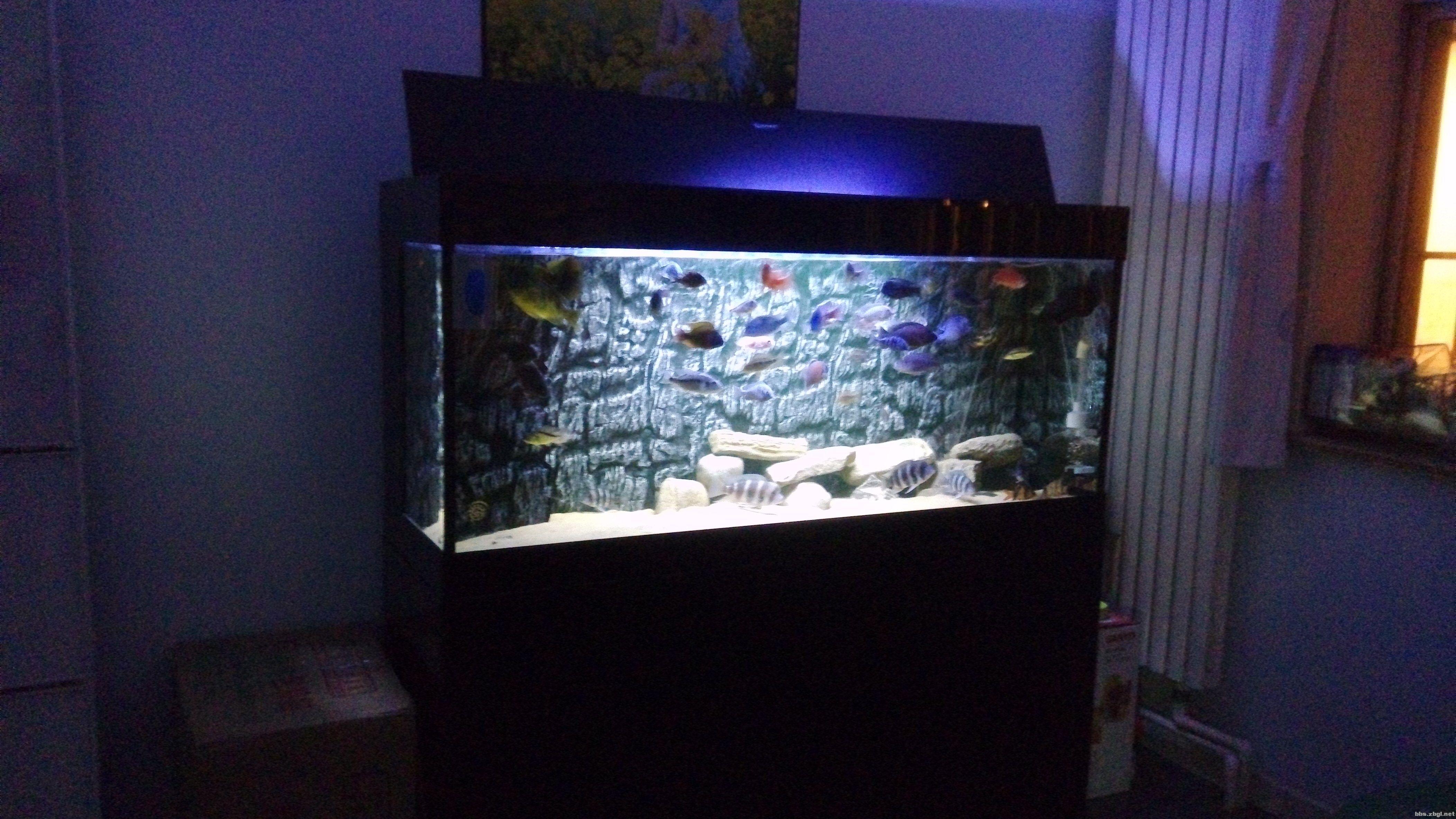 天润底滤鱼缸设计图展示