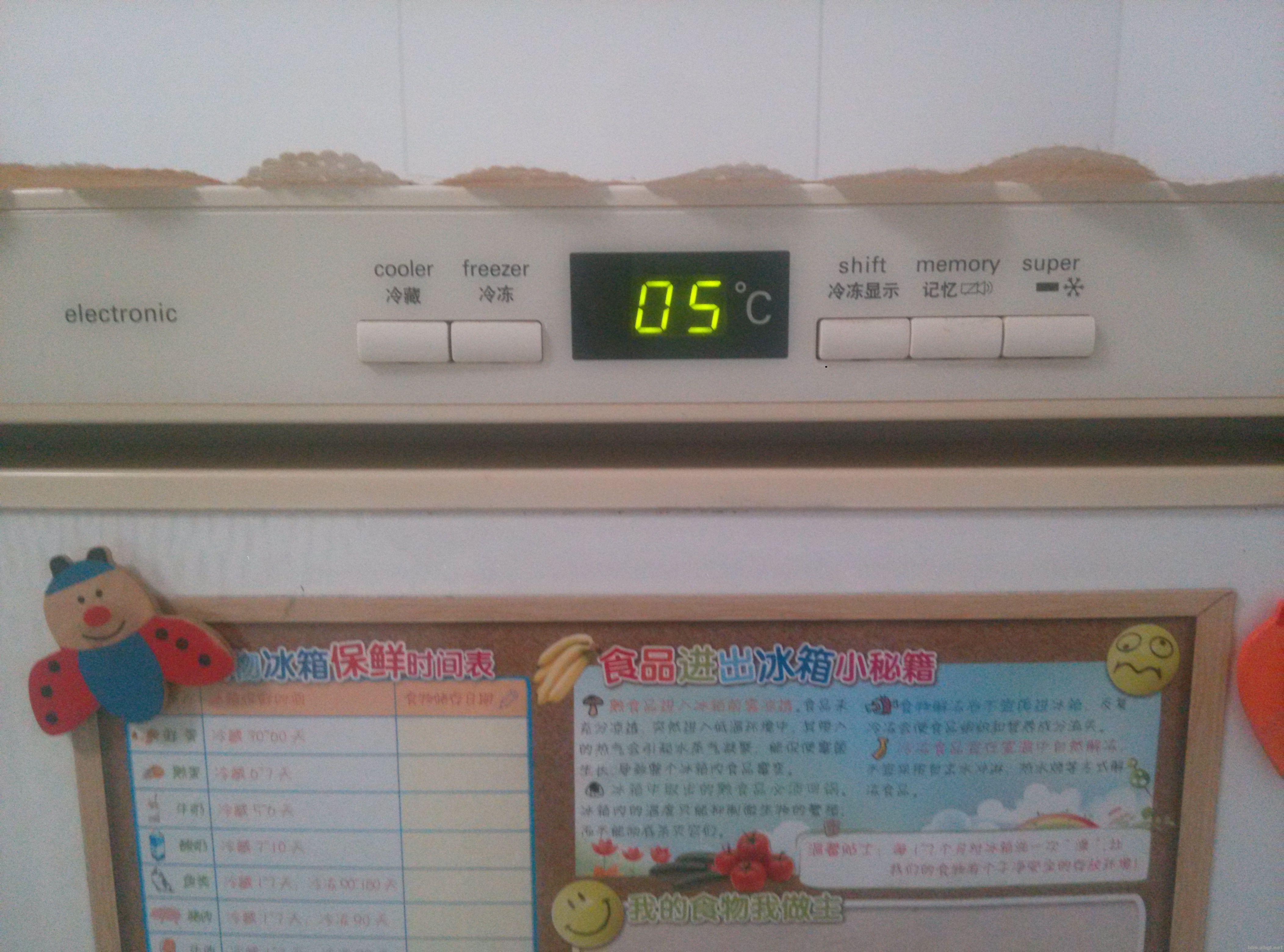 在用的十年西门子温控冰箱一百五卖了!
