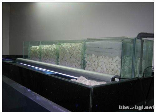 最详细全面的鱼缸过滤系统
