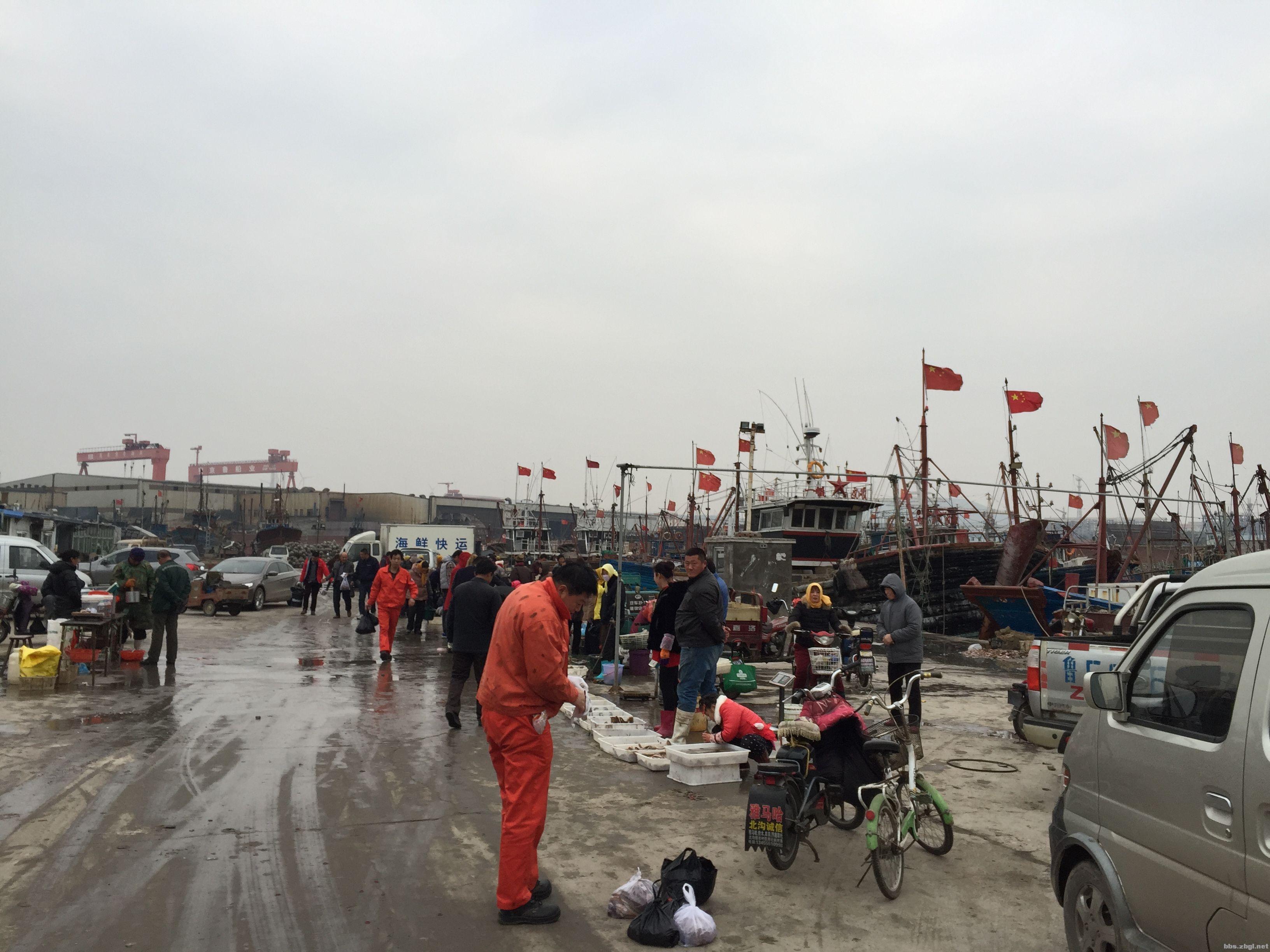 海捕海鲜送货到家 烟台海鲜直运