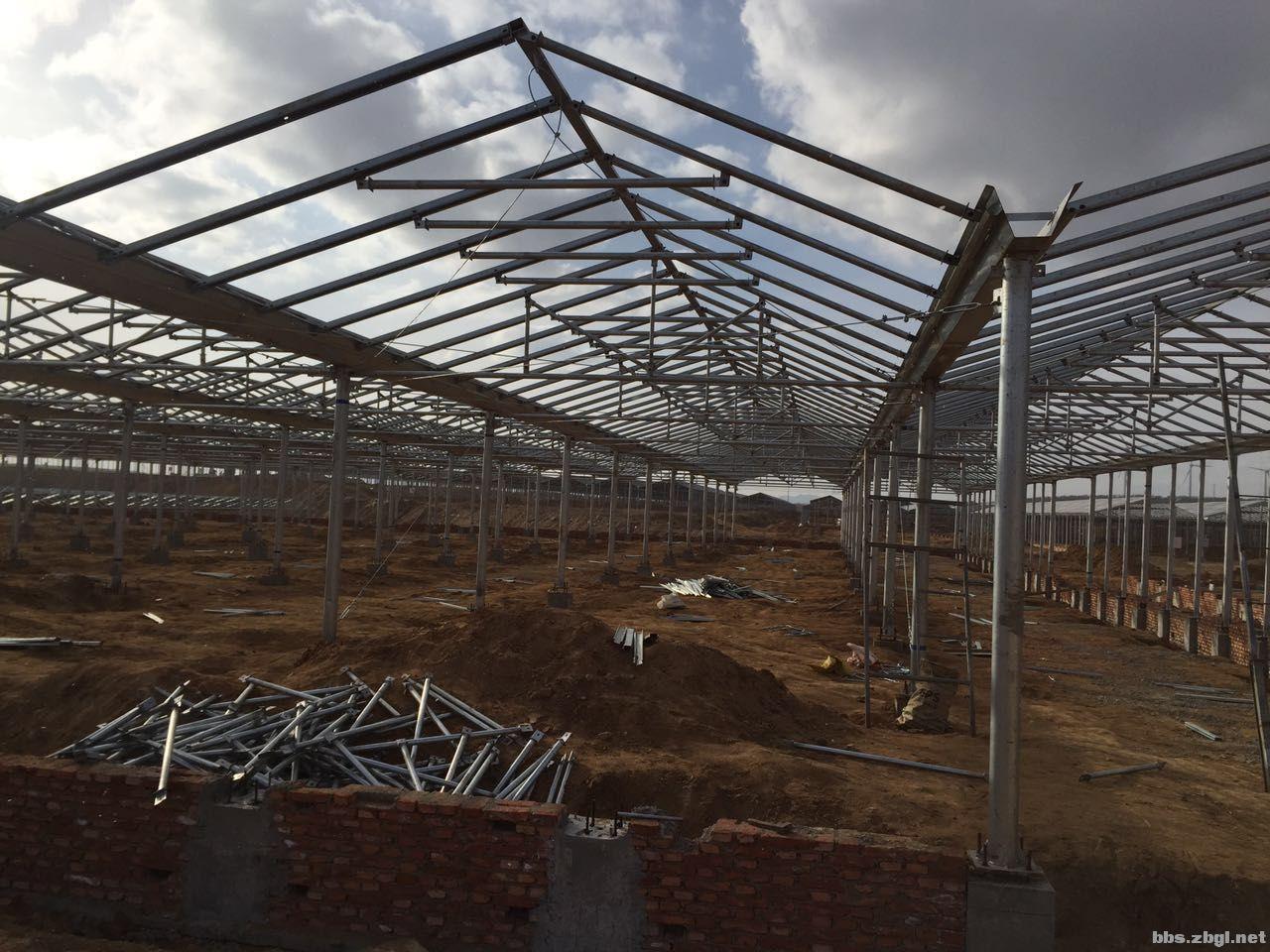 招钢结构大棚制作安装施工队